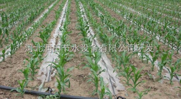 内蒙古农业玉米滴灌带价格