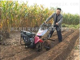 玉米除草机,棉花除草机,果树除草机,小型多功能除草机 4.5马力 小型农田专用微耕机