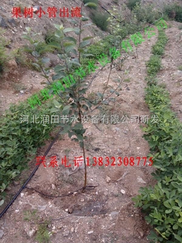广西柑橘滴灌价格,农业压力补偿滴头