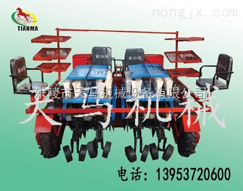 秧苗移载机首先乐陵天马  zui新型移栽机械  *天马机械