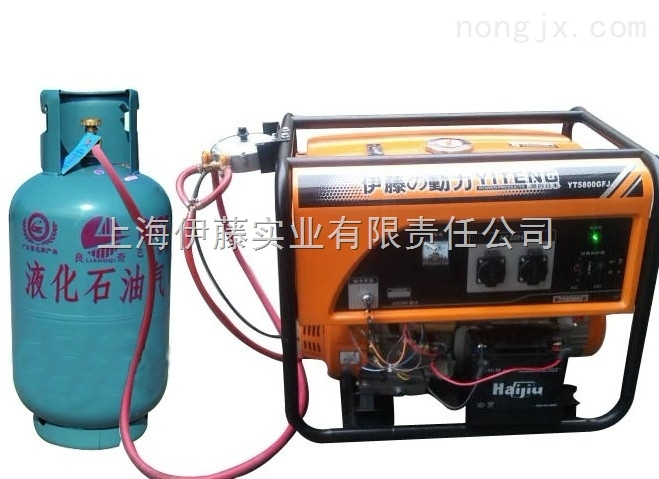 yt5800gfj-家用天燃气发电机|便携式发电机价格|小型