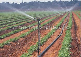 供应内镶式滴灌带:河南玉米滴灌带【优质滴灌带厂家直销】