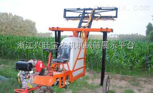 供应水田喷药机-水稻喷药机-水田自走式喷药机