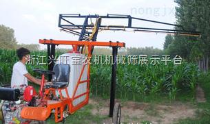供应新型自走式水稻喷药机埂上行走