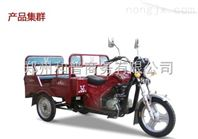 宗申Q5传旗(广东小客斗 轻型车)水冷老年客运休闲三轮摩托车