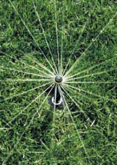 美国雨鸟喷头进口-地埋式喷头-1804射线喷头-喷灌喷头