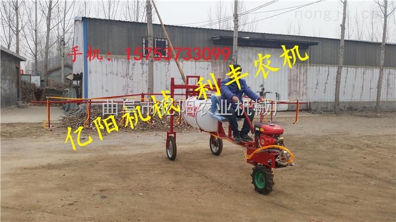 农药喷雾器,大型农药喷雾器