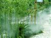 环保消毒/湿度围场/人工造雾设备