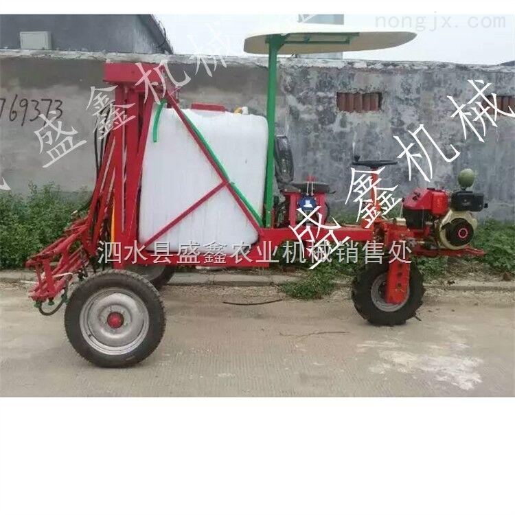 果园喷雾打药机 高品质手推式农用打药车