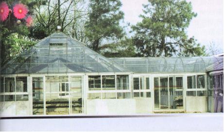 异型钢架结构别墅房示意图